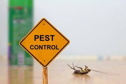Pest Contol in Moorgate, Liverpool Street, EC2. Call Now 020 8166 9746
