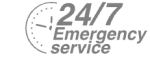 24/7 Emergency Service Pest Control in Moorgate, Liverpool Street, EC2. Call Now! 020 8166 9746